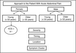 Figure 1:. Algorithm... - Click to enlarge in new window